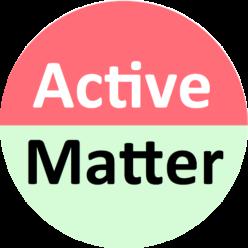 ActiveMatter ITN